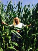 Illinois Corn.